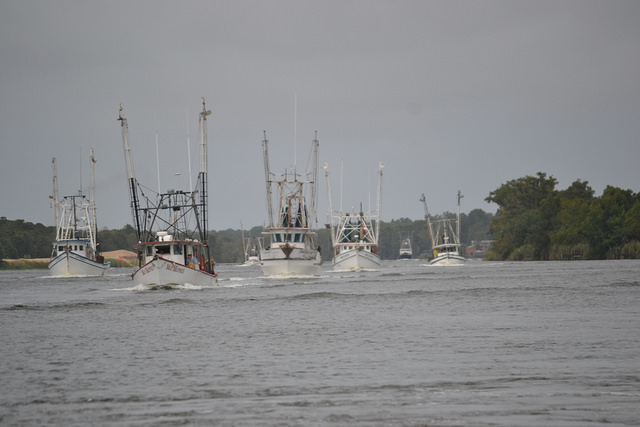 Rubio's Florida Fisheries Improvement Act Gets Widespread Support From Different Sectors