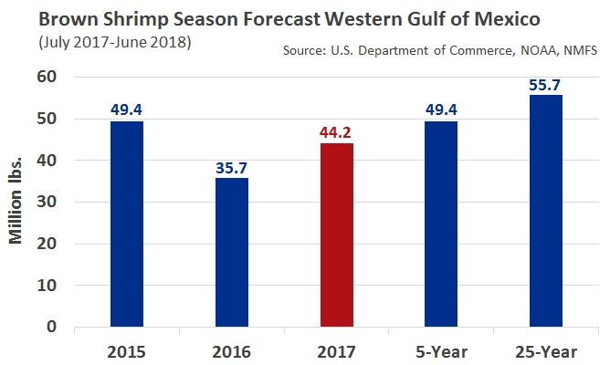 ANALYSIS: Brown Shrimp Season Volume Forecast Below Average