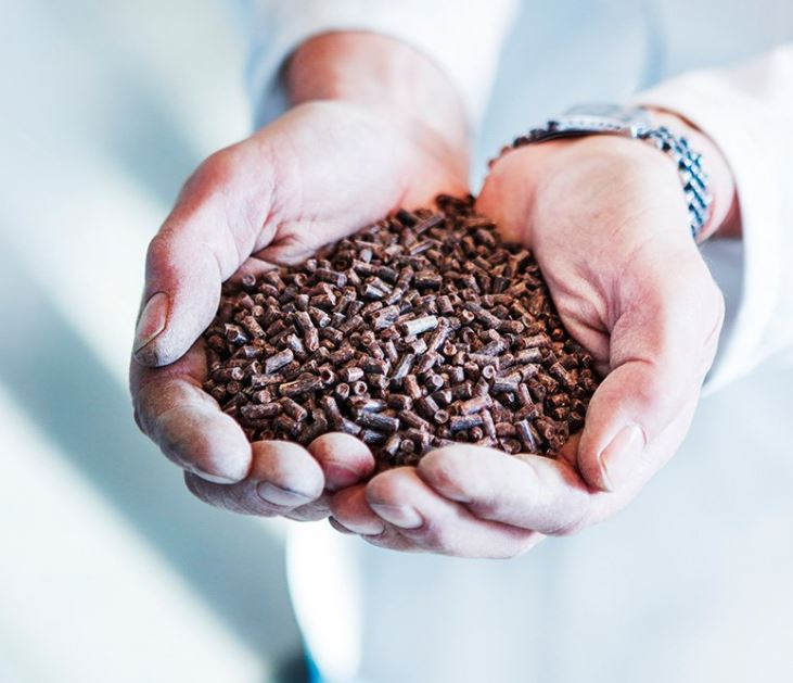 Calysta Trial Reveals FeedKind Protein Could Replace Fishmeal in Shrimp Feed