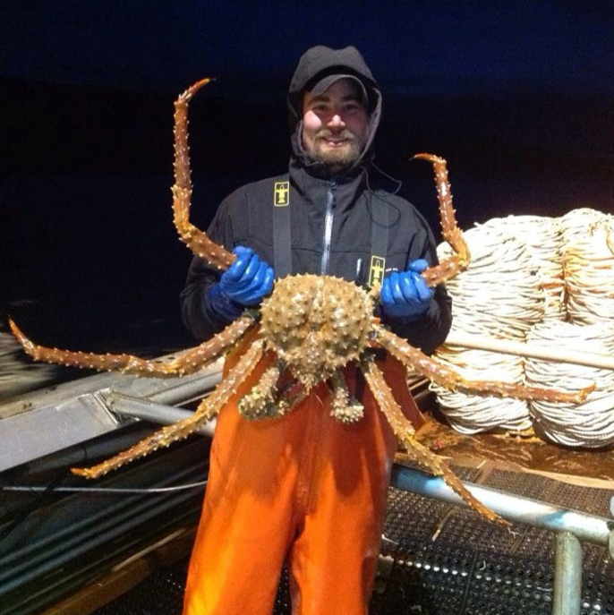 Congress Directs FDA to Formally Change Brown King Crab to Golden King Crab in Budget Bill