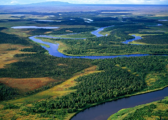 Pebble Mine Files for First Permit to Fill Bristol Bay Watershed Wetlands