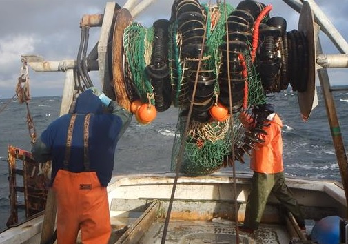 NE Fisheries Scientists Expect Drastic Changes as Gulf of Maine and Georges warm 7 to 9 degrees
