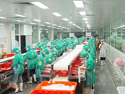 Guolian Opens a Subsidiary with 36 Peeling Lines for Processed Shrimp Products