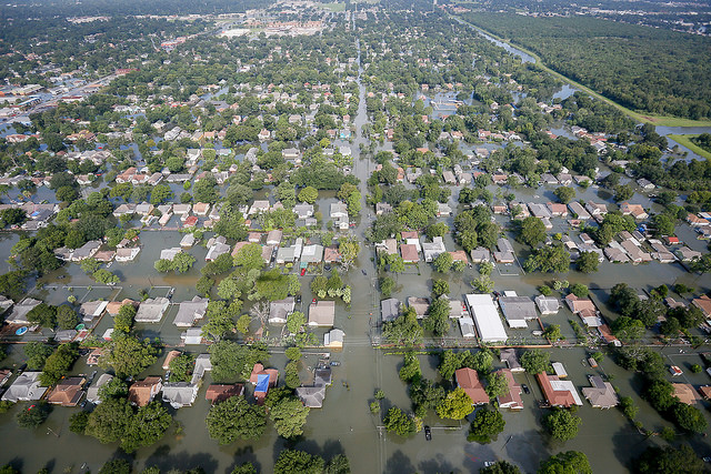 NMFS Relaxes Some Gulf IFQ and Dealer Reporting Rules in Wake of Hurricane Harvey