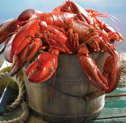 Fortune Fish Expands into E-Commerce Seafood Sales With Deal to Buy Lobster Gram