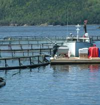 Aquaculture not in New Canadian Fisheries Plan, But LeBlanc Calls for Scientific Transparency