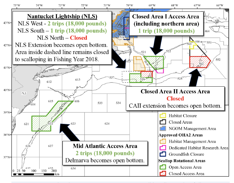 NMFS Approves New England Council Habitat Amendments; Will Provide Boost to Scallops up to 60 Millio