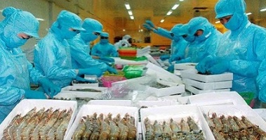 Trade Court Remands More Vietnamese Shrimp Duty Rates Over Forced Labor