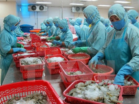 Vietnams Seafood Export Values Up 7.5% Globally But Market Share in US is Down Over 12%