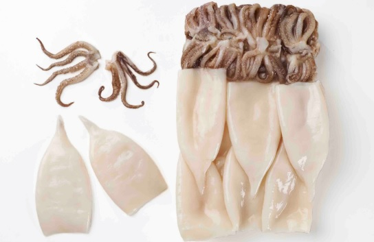 South Korea Squid Imports Soar Amid Decreased Catch Volume