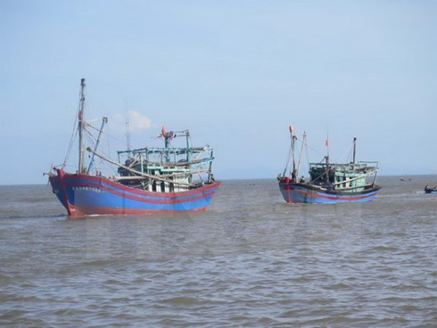Vietnam Begins to Take Action on IUU Fishing to Avoid Potential EU Sanctions