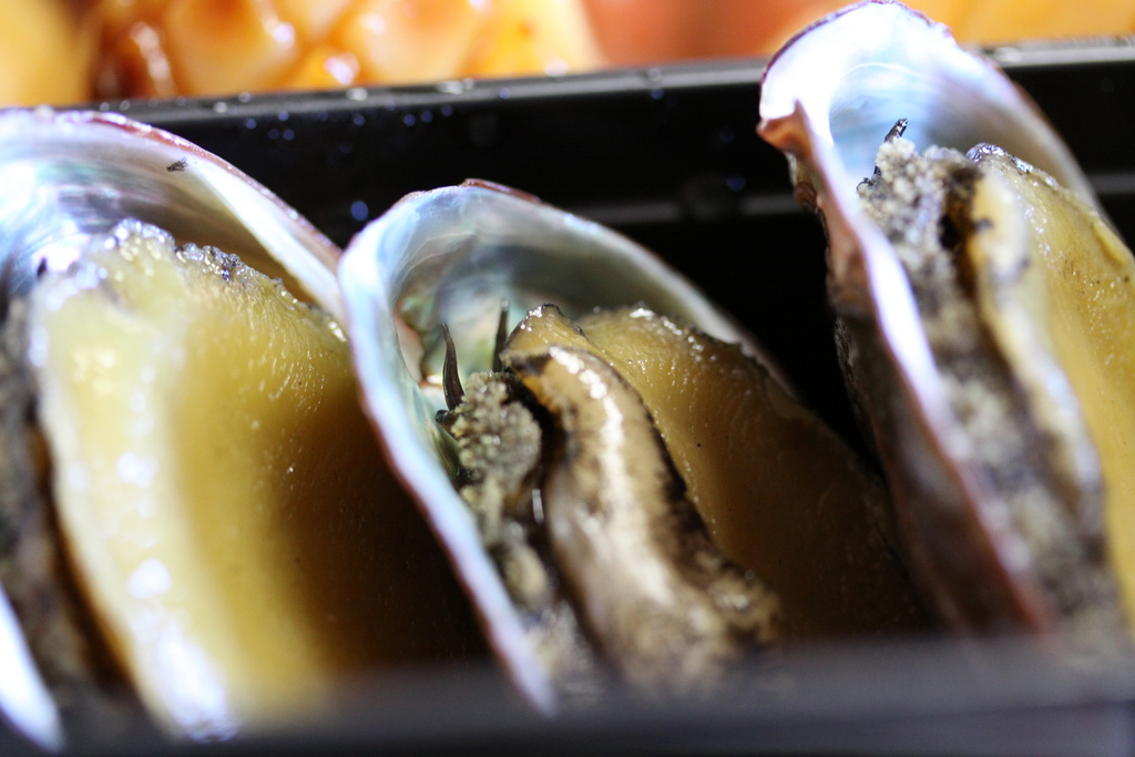 New South Wales Fisheries and Police Continue Focus on Illegal Abalone Traffickers