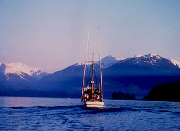 Alaska Year in Review: Salmon Great, but Whitefish and Crab Take a Hit