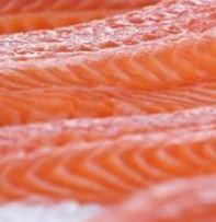 Innovative Feed Produces Salmon With Double the Omega-3 Content