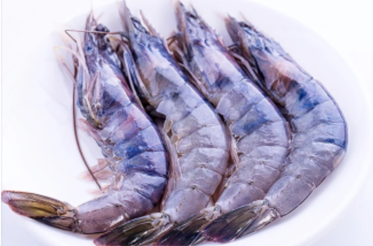 Brunei Blue Shrimp Sold Exclusively on Alibabas T-Mall Platform Under New Agreement