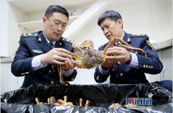 Wehai Airport Now Brings in Live King Crab from Alaska