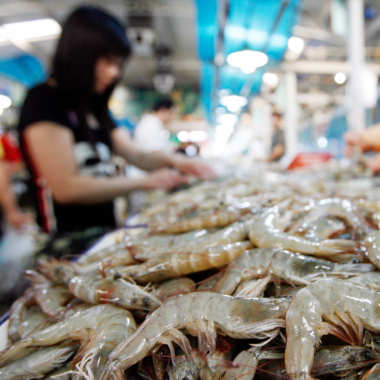 China Shrimp Importers Anxious About Fall in Prices After New Year, Leaving High Cost Inventory