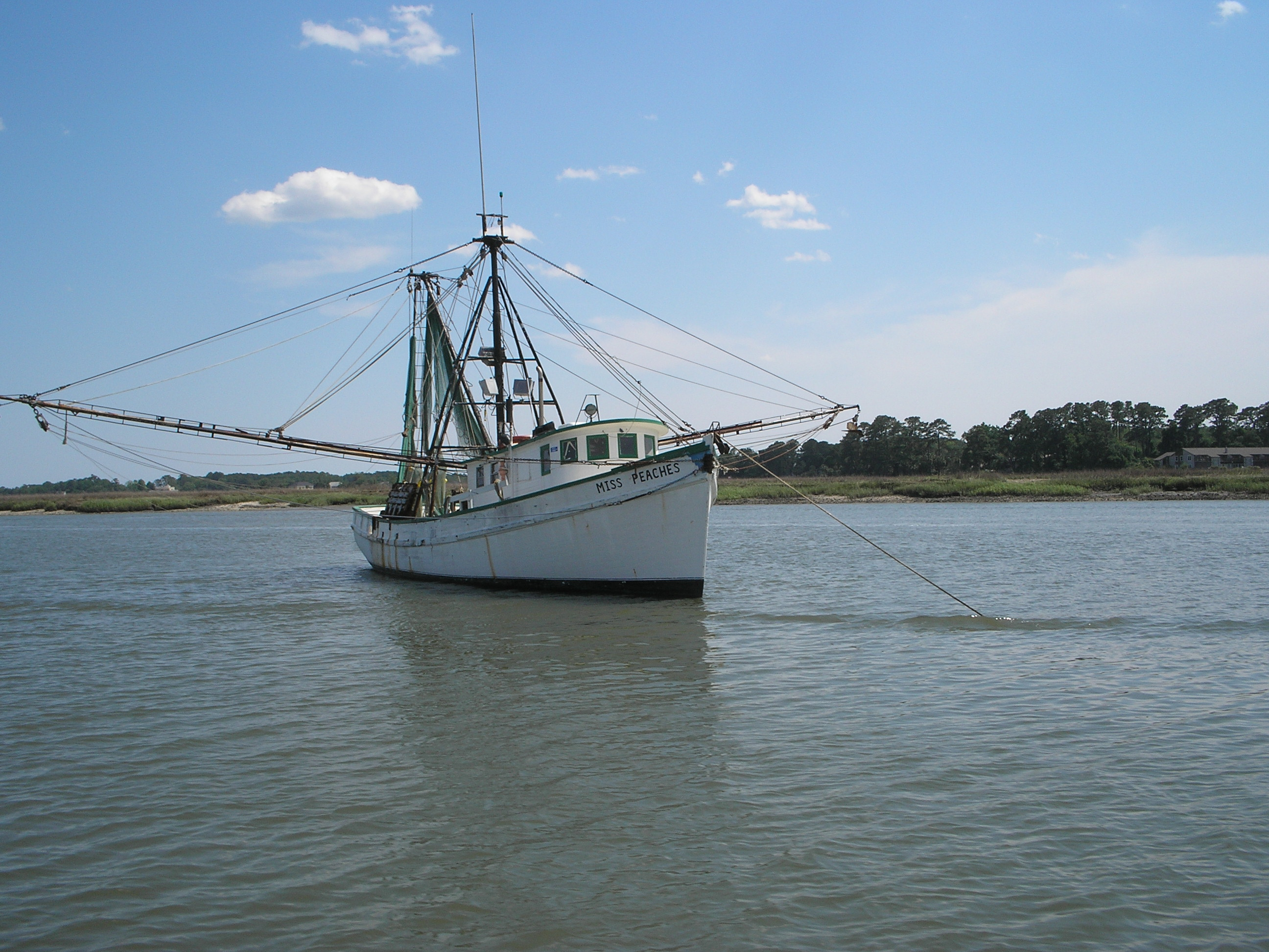 Florida and South Carolina Fishermen Live and Die by Stock Assessments; Want More Responsiveness