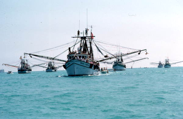 Celebrating Modern Shrimpers on Floridas West Coast