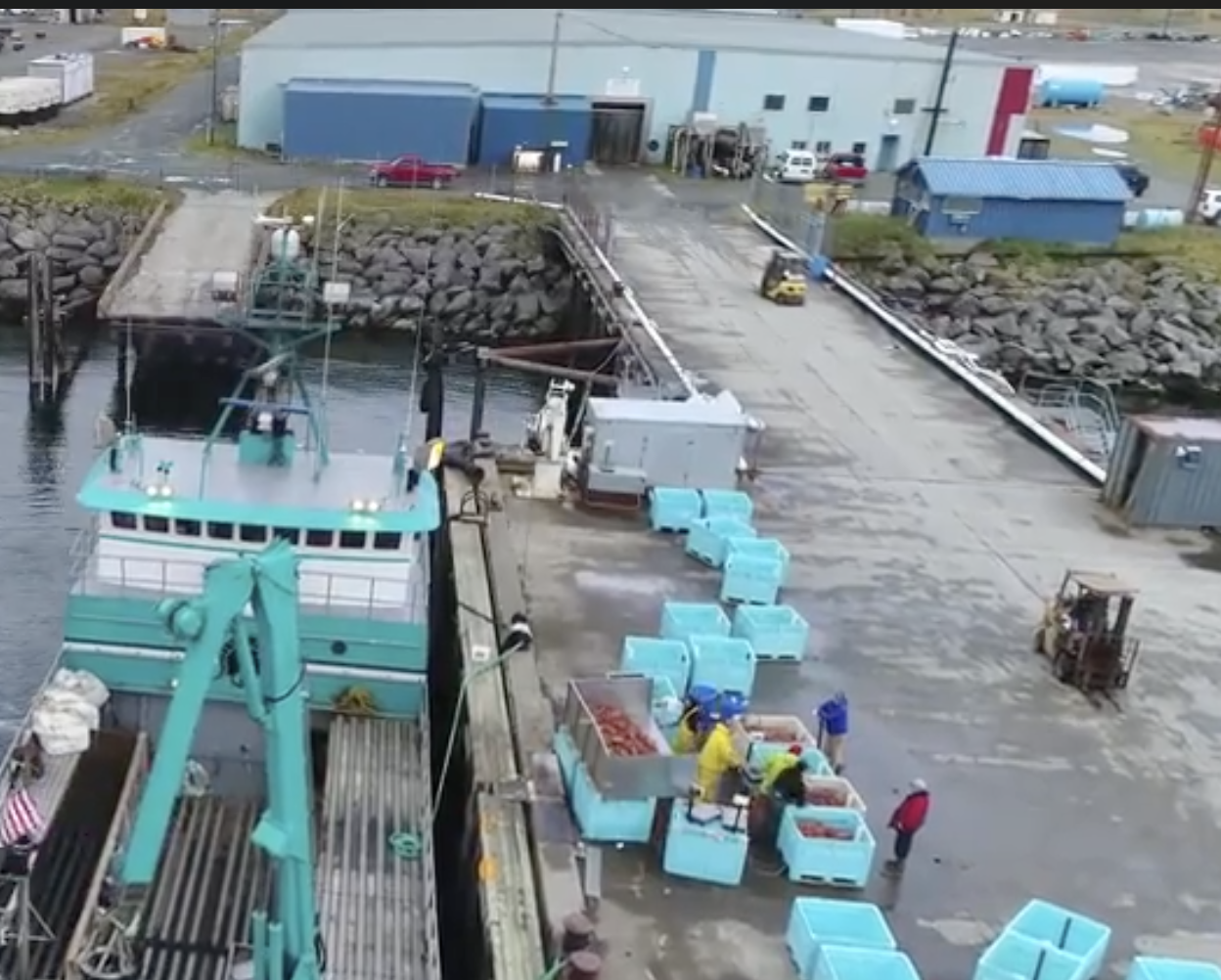 Adak 5000 ton Cod Allocation Gets Discussed at Council, as Unforeseen Scenario Put it at Risk