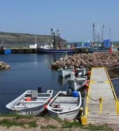 Labrador Union Shrimp Co. Signs Agreement to Process 3K Northern Cod