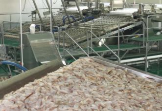 Laitram LLC Files Patent Application for Shrimp Deveiner