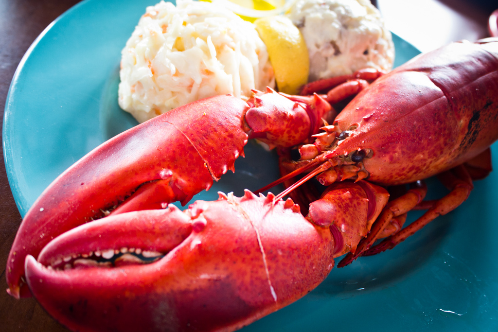 The Most Popular Seafood Options for Valentines Day