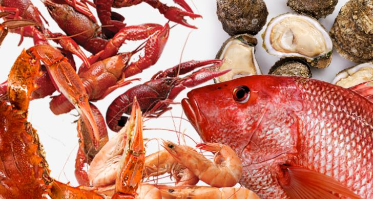 New Study Reveals Why Pregnant Women Should Eat Seafood