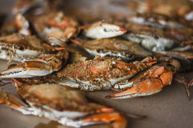 How to Know if the Steamed Crabs and Crab Cakes Youre Eating are Really from Maryland