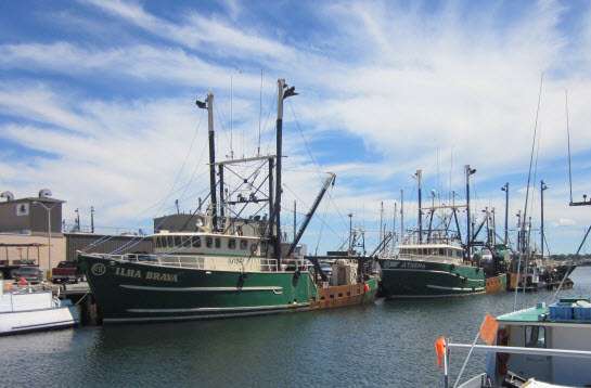 New Bedfords Sector IX Sends New Proposal to NMFS in Attempt to Regain Operating Status