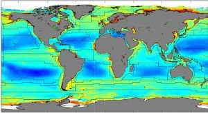 New Study Reveals Benefits and Concerns of Phytoplankton In Coastal Areas