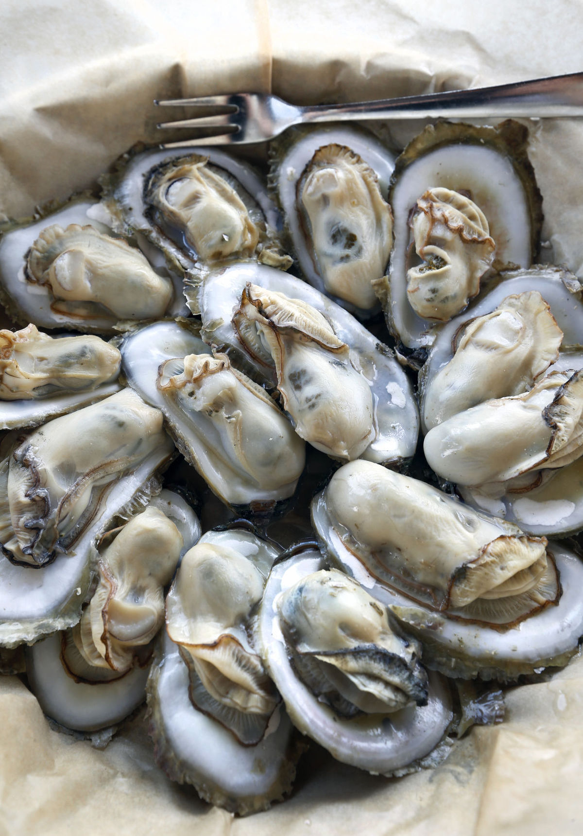 Why Rappahannock Oyster Company is Shipping Chesapeake Oysters to China