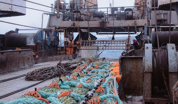 Russian Fishery Tries to Get Murmansk Cod Trawlers After Rival Accused of Having Foreign Ownership