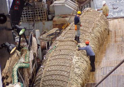 Russian Pollock Producers Again Vow to Focus more on Domestic Market