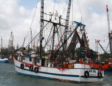 Texas Shrimpers Still Struggling with Lack of Crew, Visa Applications in Pipeline