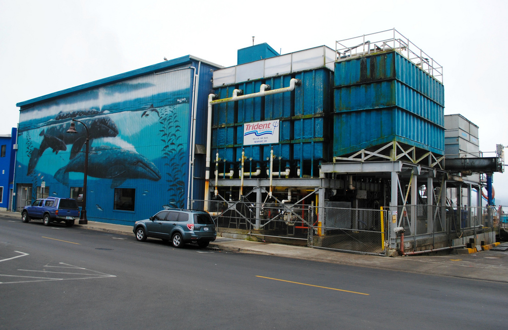 Trident to Sell Newport Surimi Plant to Pacific Seafoods, If Pacific Gains Community Support