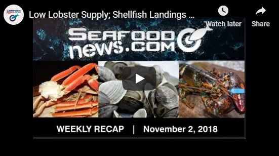 VIDEO: Low Lobster Supply; Shellfish Landings Drop; Snow Crab Supplies swindle; Crabbers Fund Study