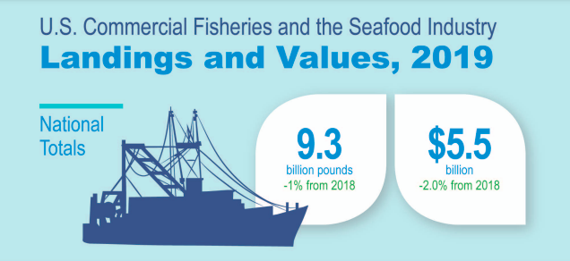 6 Highlights From the 2019 Fisheries of the United States Report