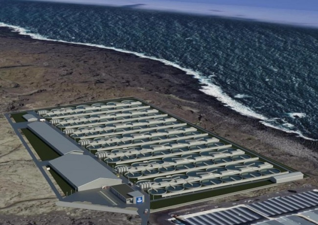 Samherji, HS Orka Agree to Develop Land-based Salmon Farm with 40,000 MT of Capacity