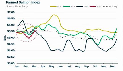 ANALYSIS: Salmon Market Marches Onward and Upward