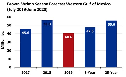 Below Average Season Predicted for 2019 Gulf of Mexico Brown Shrimp Harvest