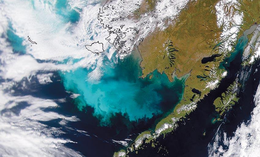 Impacts of Increased Heat on Alaska's Fish: Still more Questions but A Few Surprising Results