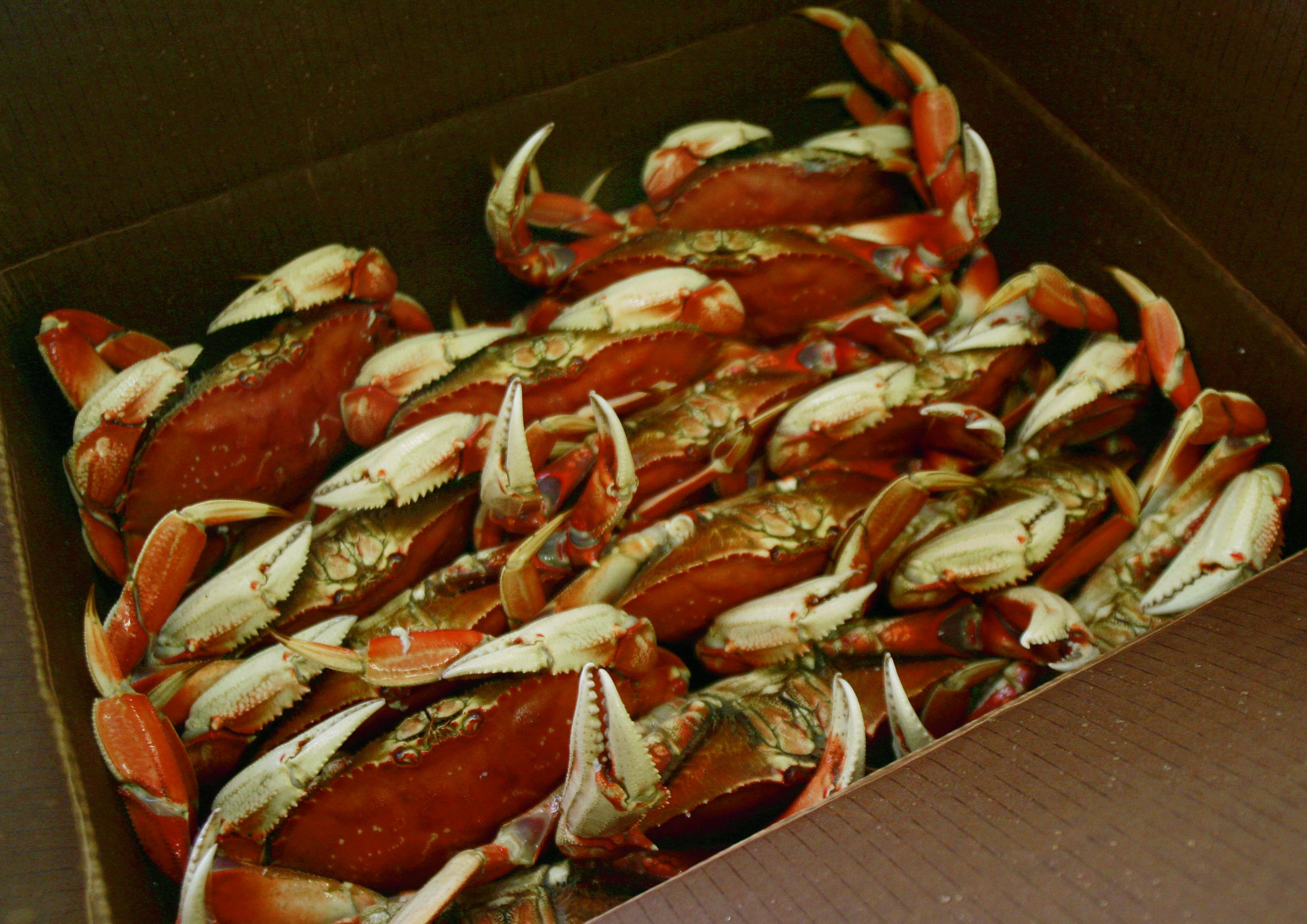 Dungeness Crab Makes Oregons List of Top 20 Agriculture Commodities