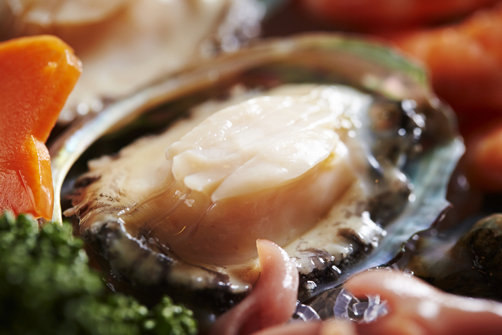 Abalone Wows Onlookers with Recent Performance in Chinese Market