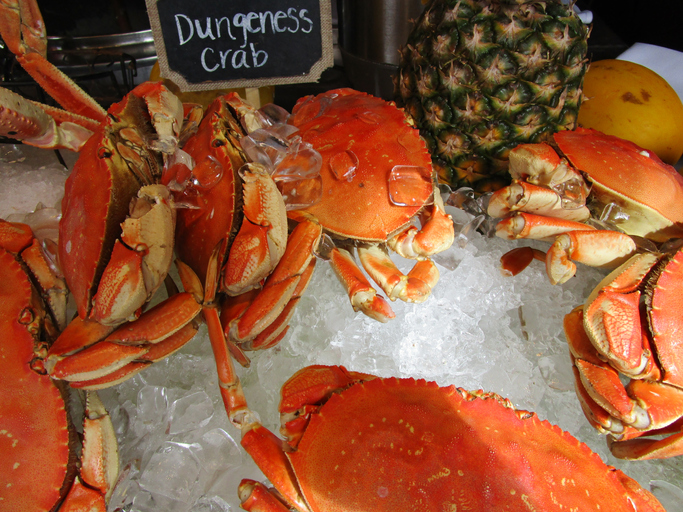 West Coast Crab Meat Recovery Results Show Consistent Range from CA to WA