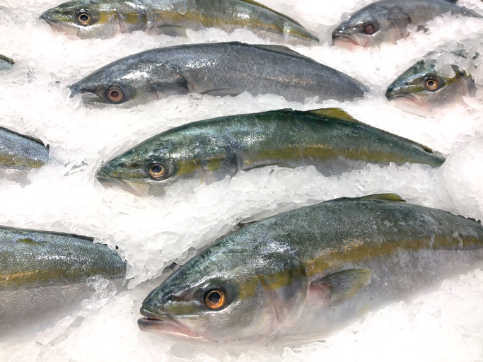 JAPAN: April Supermarket Seafood Sales Up More Than 10%