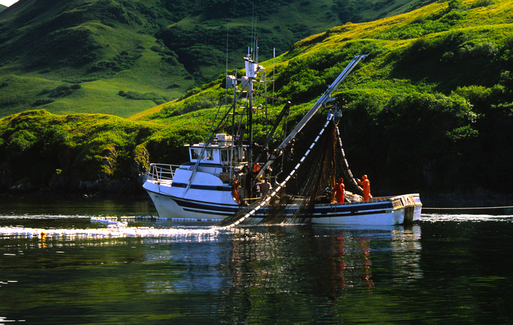 Salmon Pace Is Picking Up And So Are Prices