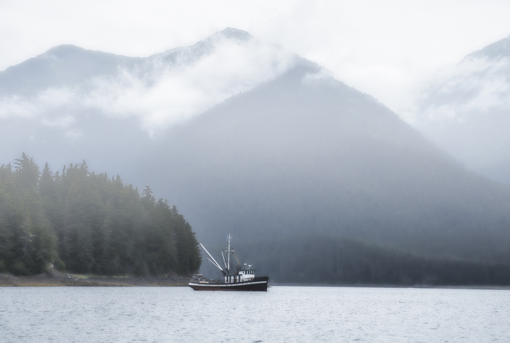 Salmon Catches in N. Pacific at Lowest Levels in 40 years