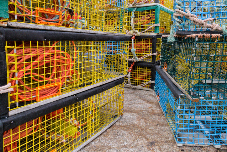 Canada's Ghost Gear Fund Removes 63 Tonnes of Fishing Gear from Atlantic Ocean in 2020