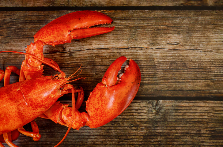 E-commerce Companies in China See Greater Seafood Sales With Prolonged Double 11